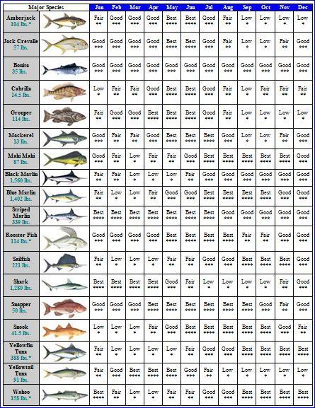 fishing chart