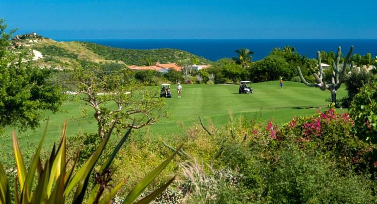 Palmilla-Golf